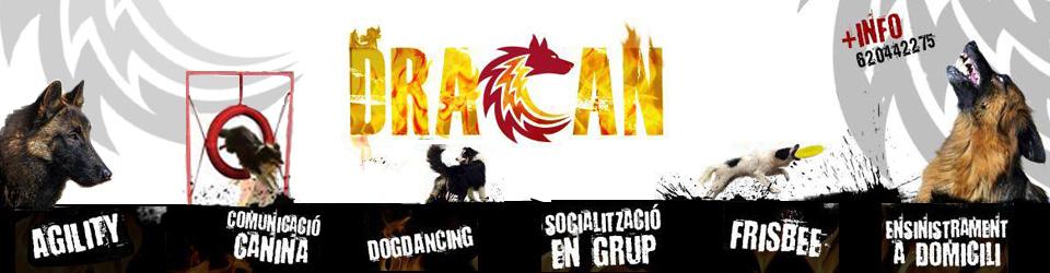 Dracan