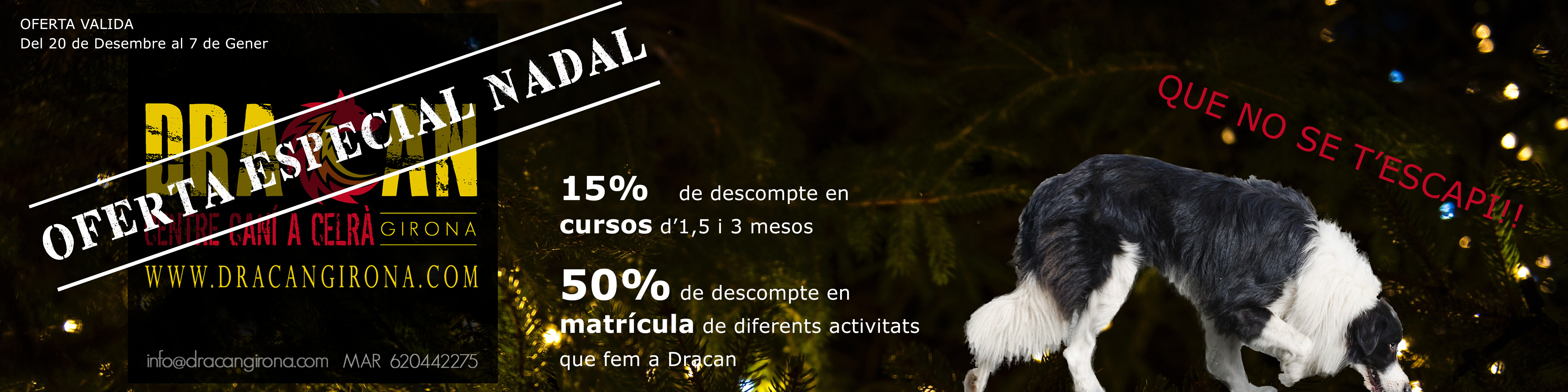 promocion-dracan-navidad-2017